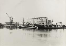 Risøen - Fryseriet Iglo sett mot nordvest 1952 tatt fra Vest