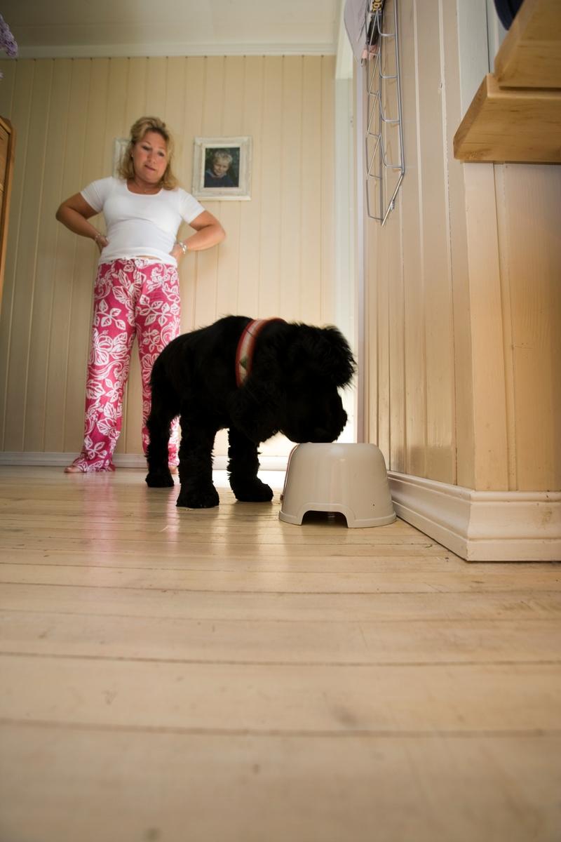 Hunden Emmy spiser mens en av  dens eiere ser på
