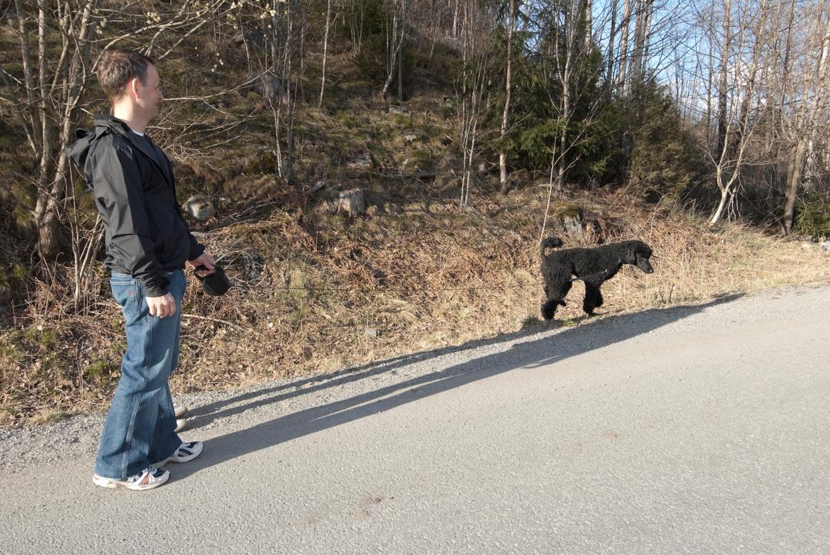 Hunden Pedro på tur med sin eier.