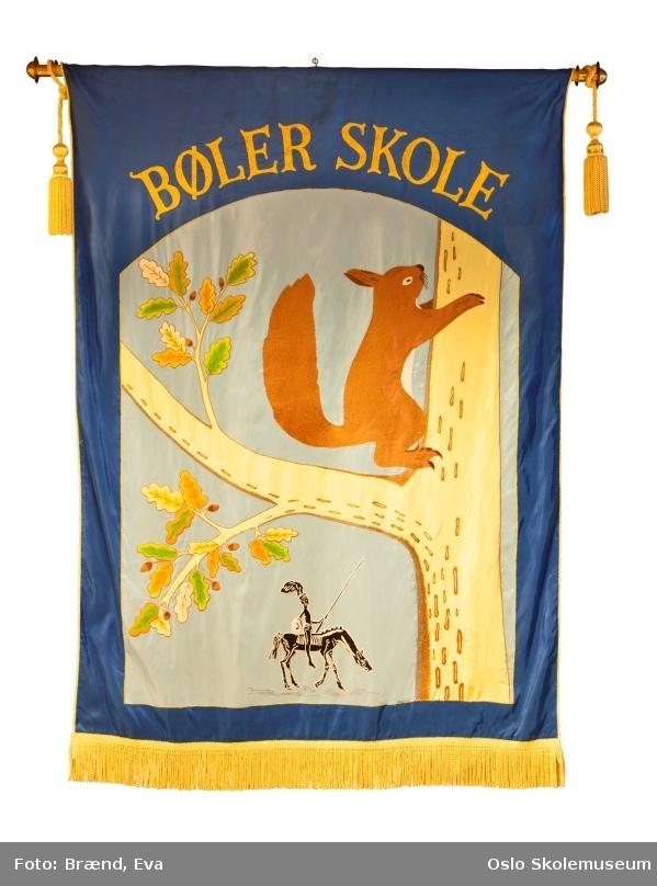 Nyere fane: Et tre med lønneblader og et ekorn (se andre opplysninger) på blåbakgrunn. Under treeet er Don Quiote (Bølers landemerke) som rir på en hest. Øverst på fanen står skolens navn.  Fane fra 1960: Et tre og en trestubbe med to ekorn (se andre opplysninger) som spiser nøtter på hvit/beige bakgrunn. Øverst på fanen står skolens navn. Nederst på fanen står året fanen ble laget.