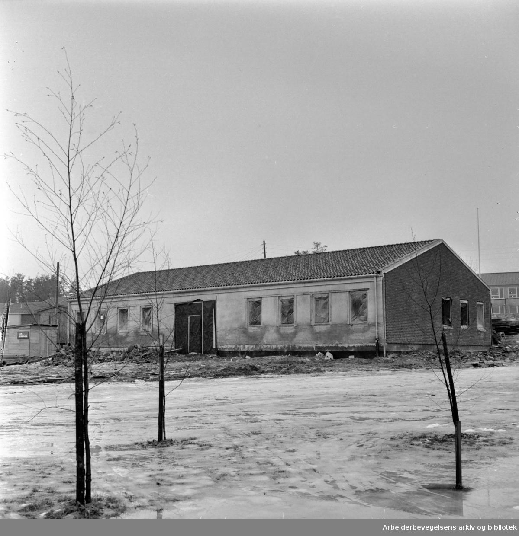 Manglerud: Deichmanske skal åpne filial i eget hus nær de to skolene på Manglerud. Februar 1964