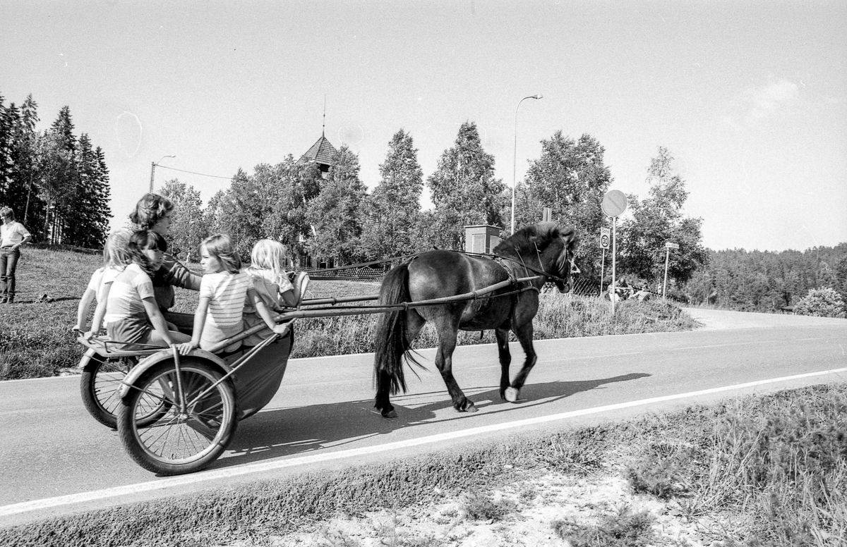 Siggeruddagen 1982. Lek med sekkeløp, hest og sulky med barn, barn og ungdom som leker.