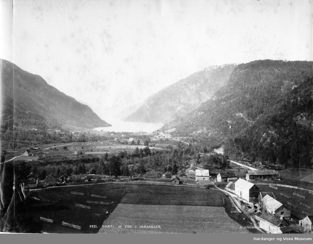 Landskapsbilete, gardsbruk, fjord