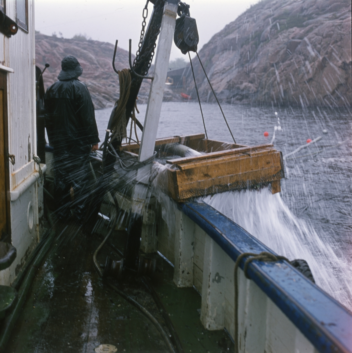 En elefanttann eller crevell blir tatt ombord i båten utgravingen av slaveskipet 'Fredensborg' i 1975