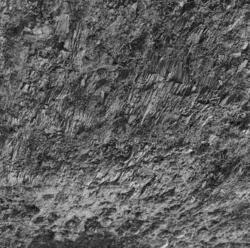 Arkeologi Storhamar, rester av treverk fra gulv, ukjent sted