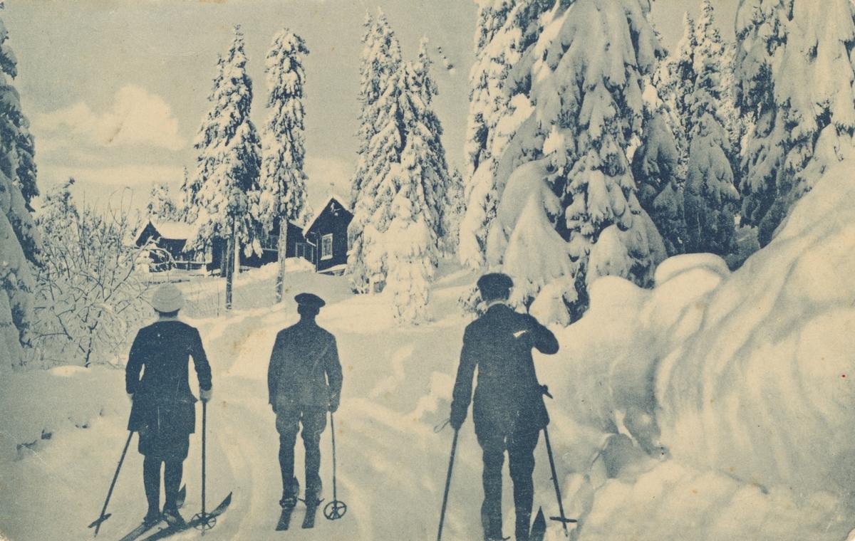 Postkortmotiv av tre skiløpere i snødekt landskap.