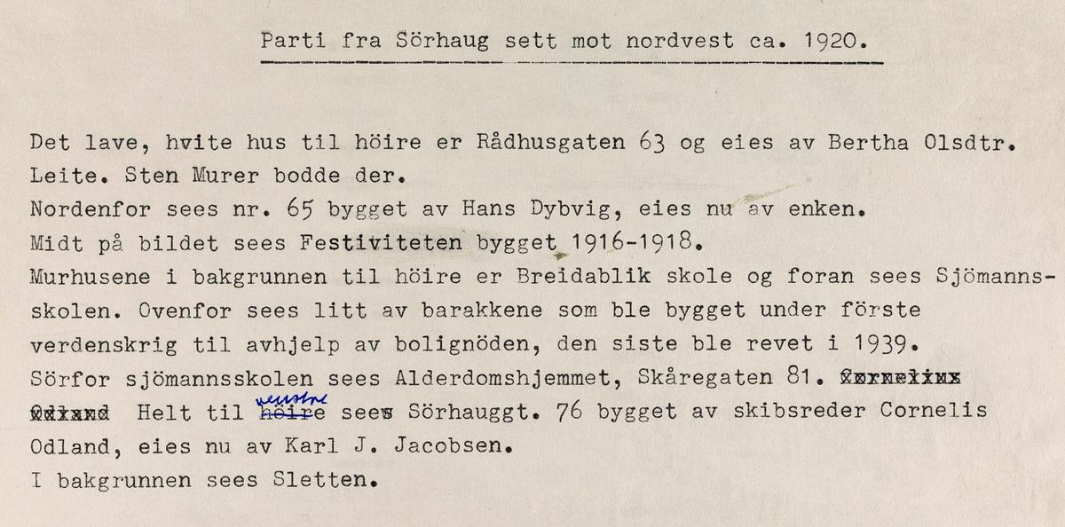 Parti fra Sørhaug sett mot nordvest, ca. 1920.