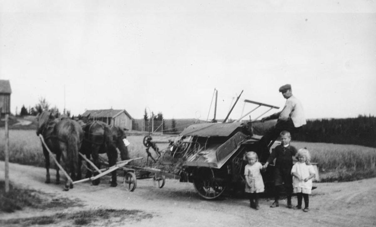 Hans Ruud på selvbinder. Hester og barn.