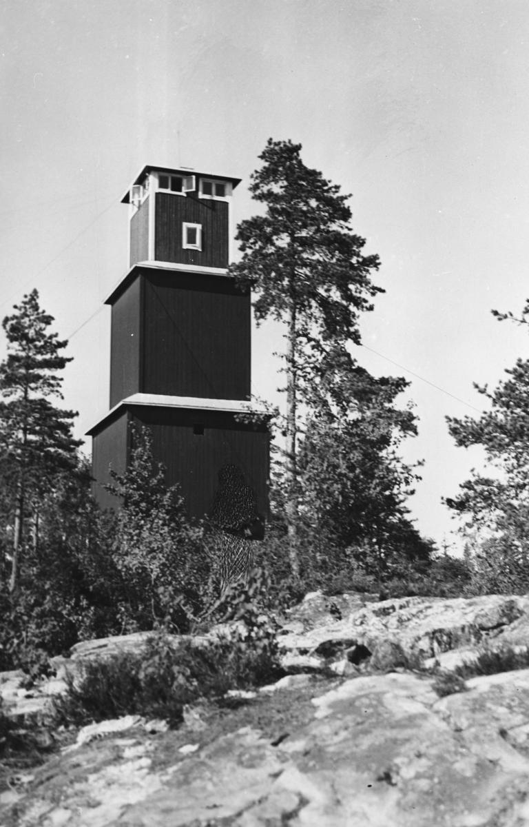 Ljansgodsets brannvakttårn på Grønliåsen.