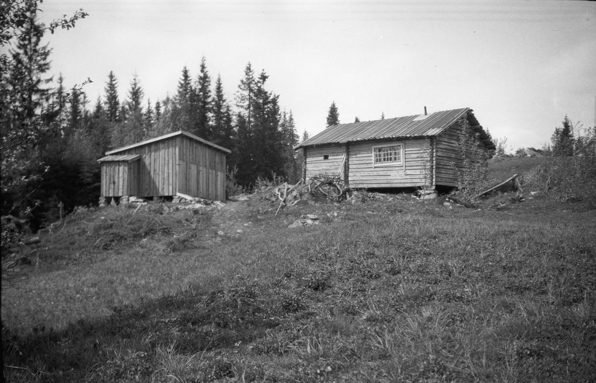 Hytte eller lite hus.
