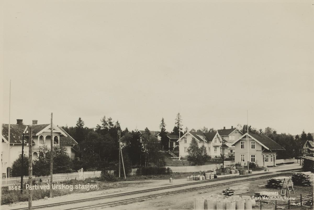 Oversiktsbilde fra Urskog stasjon
