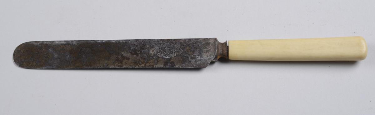Kniv med benskaft og rett knivblad med avrundet avslutning.