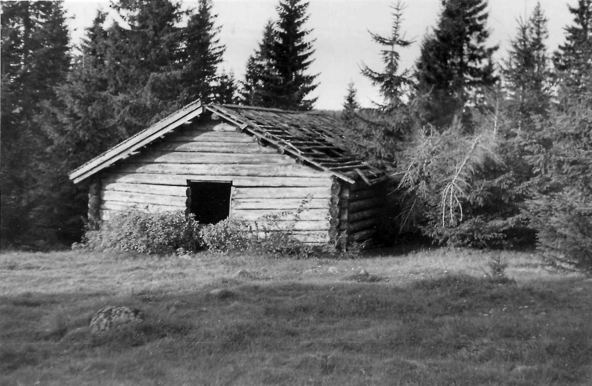 Bjerkesetra, Nannestad, Akershus. Vestre fjøset.