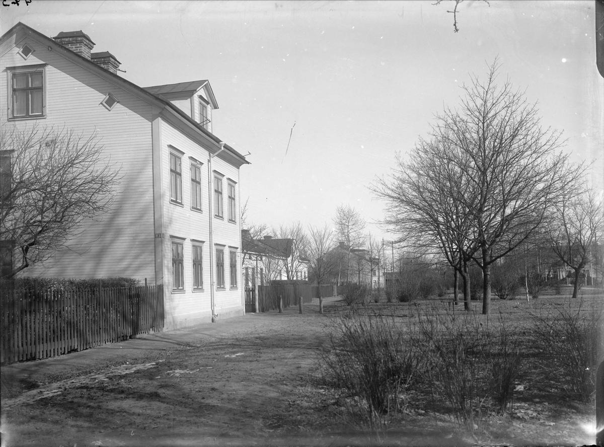 Luthagsesplanaden från Wallingatan, Luthagen, Uppsala 1908