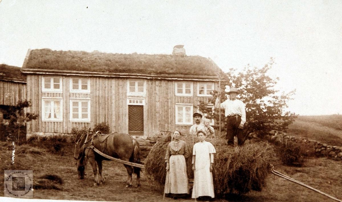 Høyonn på Solberg i Bjelland, nå Audnedal.