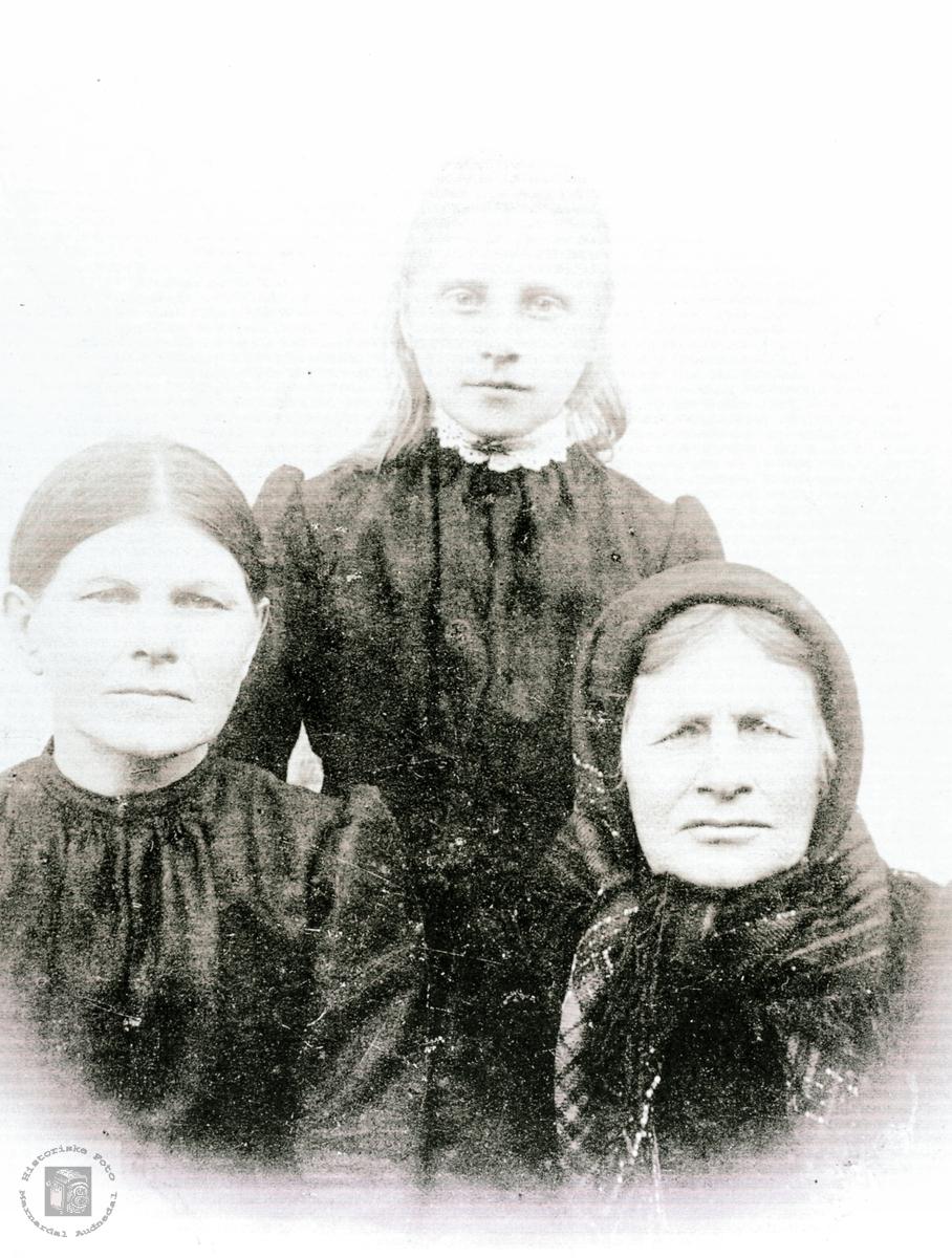 Tre generasjoner Høyland. Grindheim Audnedal.