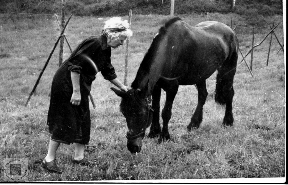 Gunhild Midstbø gift Strisland med hesten.
