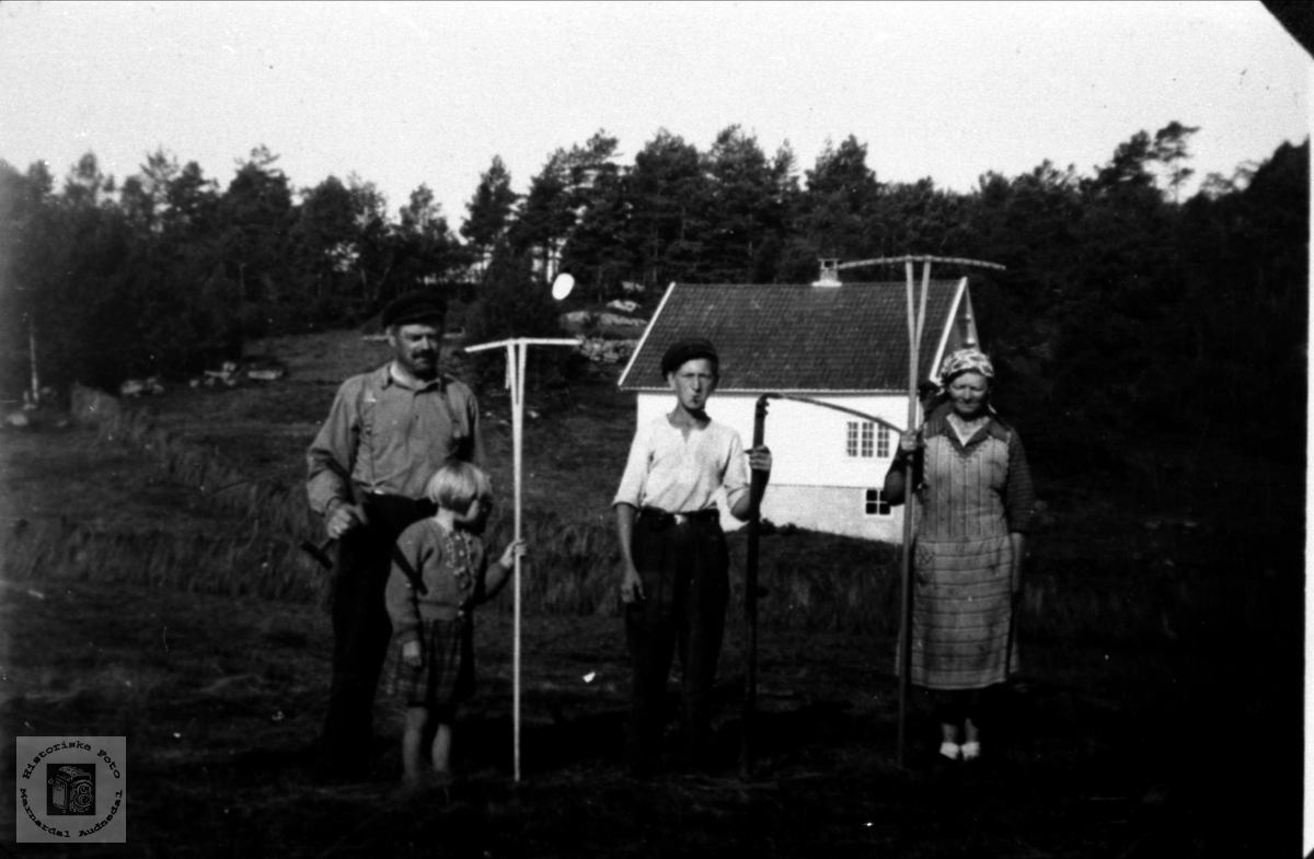 Høyonn på Høyland i Øyslebø.