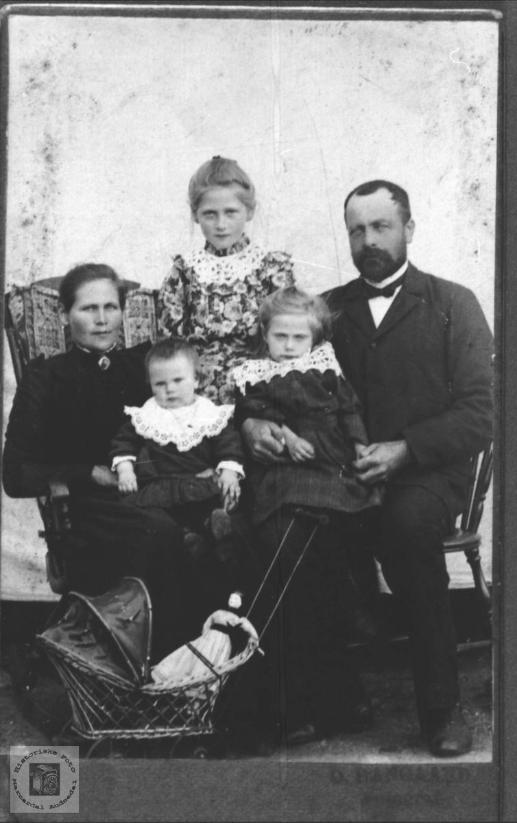 Familiegruppe Brunvatne, Øyslebø.