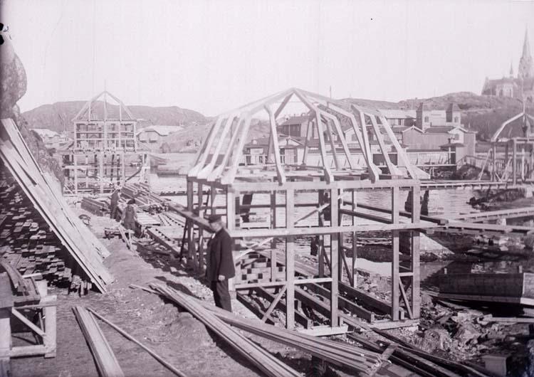 """Enligt text som medföljde bilden: """"Lysekil, Släggöbass. April 1911."""""""