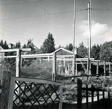 Ulvöhamn. Ångermanland, Nätra tingslag och socken, Ulvö hamn.