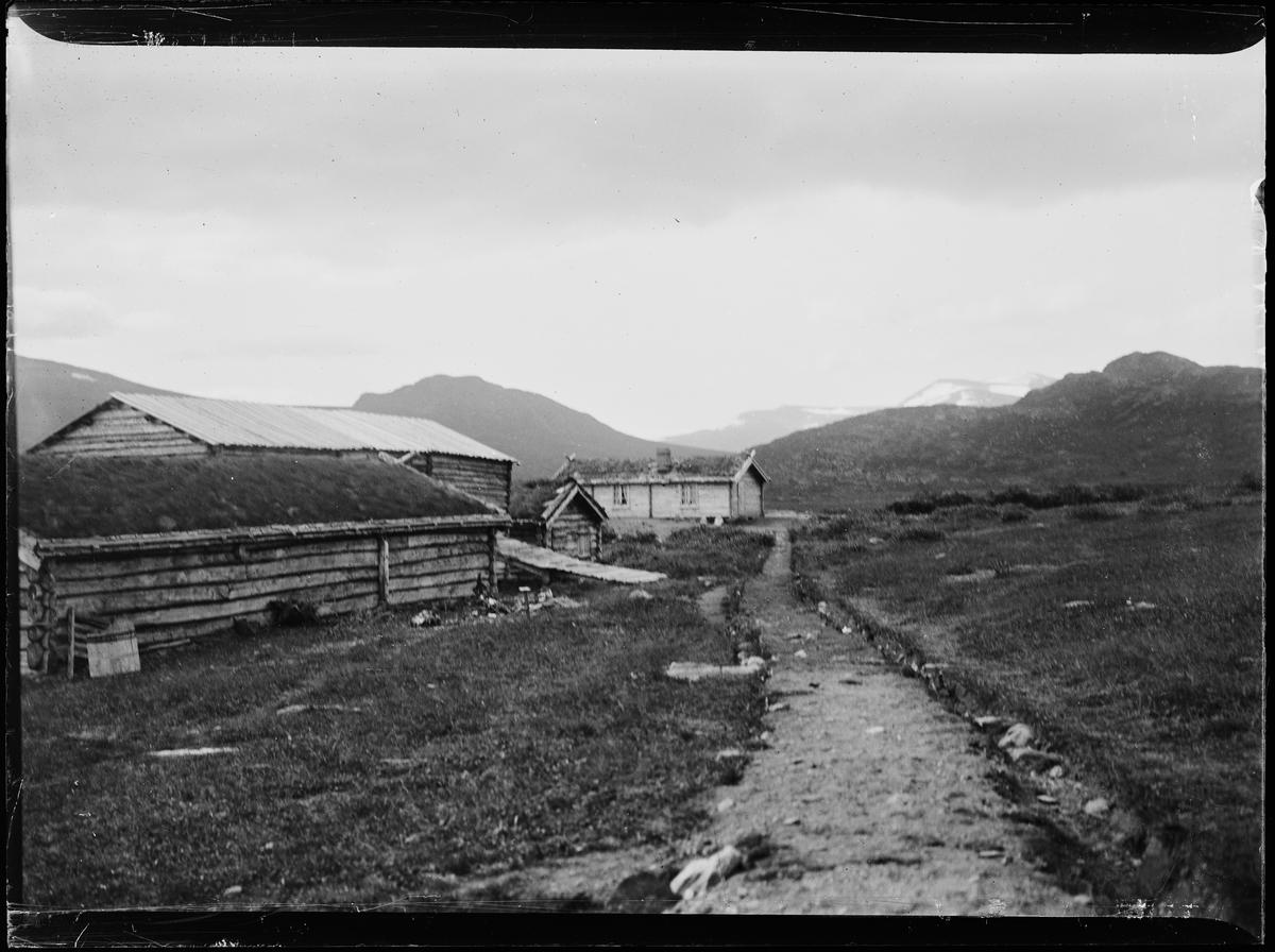 På sætra, en sti (kjerrevei) går motnoen laftede hus. Antagelig Sjølisæter ved Atnsjøen. Rondane i bakgrunnen.