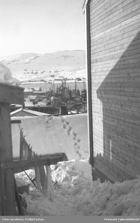 Litt av Hammerfest sentrum sett fra Salsgata. Bildet er tatt mellom to hus/brakker som står ganske tett med mye snø i mellom. Fotspor ses i snøen på taket til brakka litt lengre ned på bildet. En del båter i varierende størrelse ligger fortøyd ved den. Midt på bildet ses en kai med mange båter i varierende størrelser liggende inntil. Noen havnebygninger ses oppå kaia og en liten del av havna/innseilingen til byen ses bak båtene. På andre siden ses Storfjellet og Vedhammeren. En del hus og brakker er kommet opp på Fuglenes og i Fuglenesdalen. Blå himmel med solskinn vitner om en værmessig flott senvinterdag.