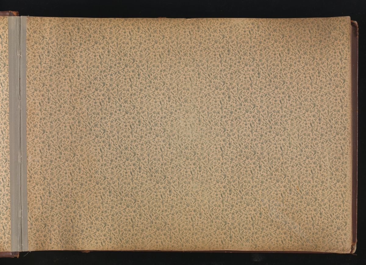 """Innbundet album fra Mathiesen-familien på Linderud gård. For og bakside i brunt skinn, med gullpreget skrift """"Album"""" på forsiden. Innsiden er kledd i papir med blomsterranke- og fuglemotiv på den ene siden, blank på den andre. En side papir foran og bak, 46 dobbelsider i grågrønn hard kartong med til sammen 371 bilder."""