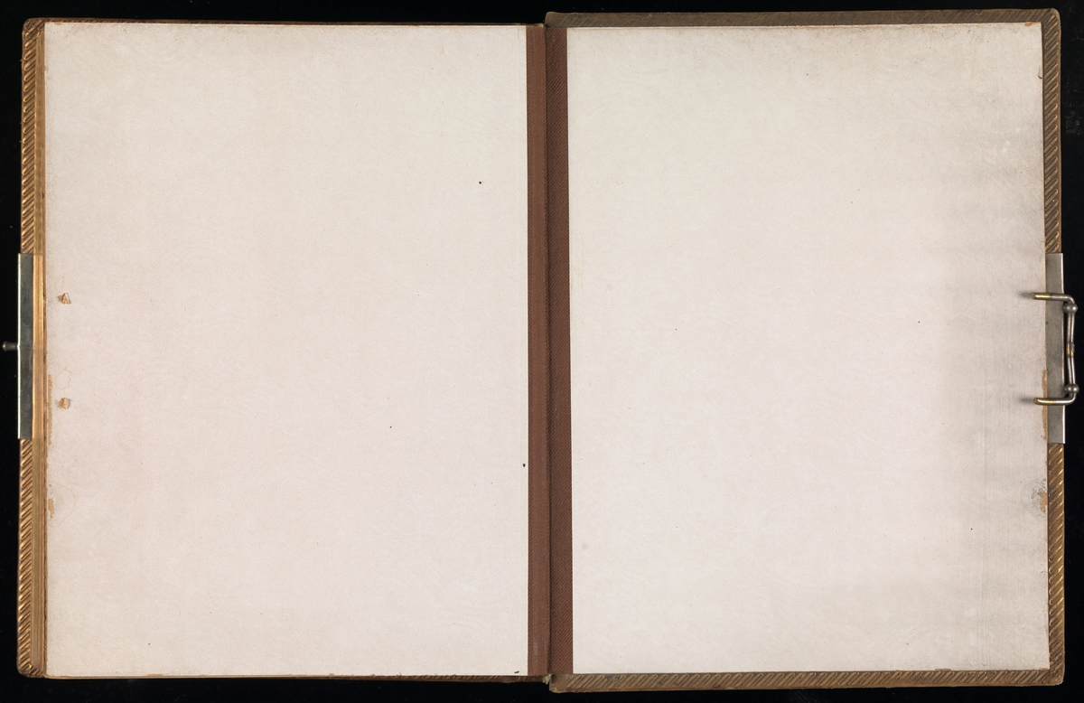 """Brunt """"cartes-de-visites-album"""" fra Mathiesen-familien på Linderud gård med til sammen 89 svart-hvitt cartes de visites-portretter inni. Coveret er av brunt kunststoff med """"Album"""" og blomster preget på forsiden og et kurvmønster på baksiden."""