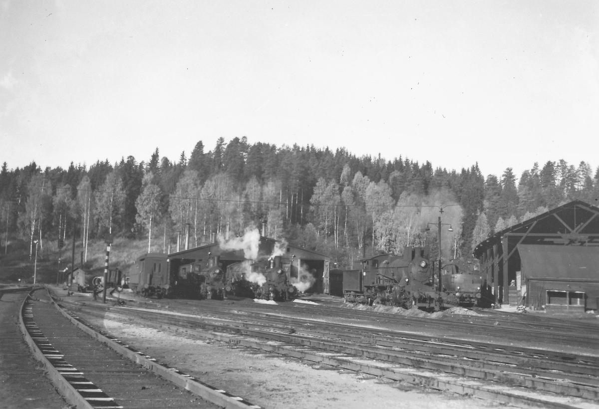 Damplokomotiver fra venstre type 21, 18c, 24b og 63a utenfor lokstallen på Hønefoss.