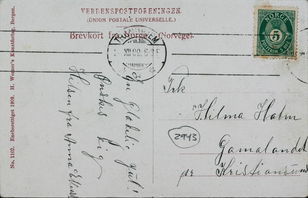 Tog og passasjerer på Svorkmo stasjon. Antagelig fra åpningsdagen 10.07.1908.