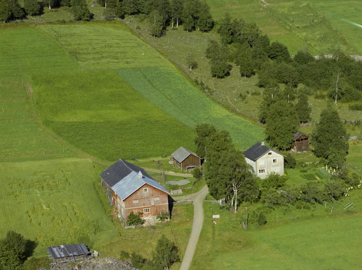 Gårdsbruk Alme, malingsslitt rød driftsbygning, hvitt våningshus og to brune uthus med dyrket mark rundt.