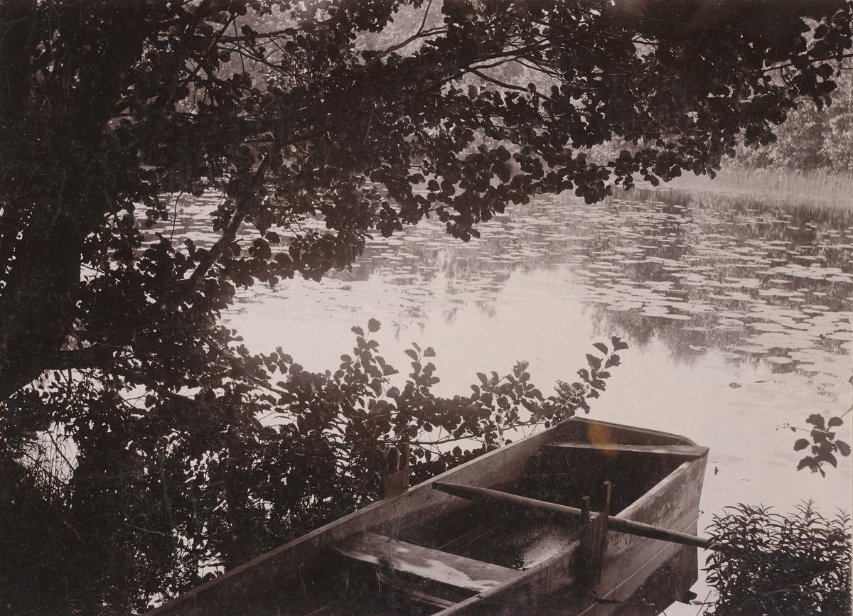 Båt i tjern