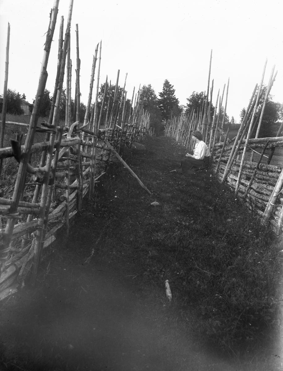 """Värmland. Jösse hd. Mangskog sn.Bjurbäcken. Fägata mellan tvänne egendomar."""