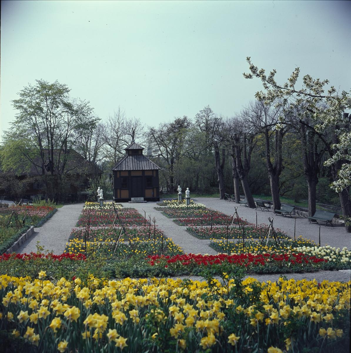 Blommande vårblommor i Rosenträdgårdens välskötta rabatter. I bakgrunden begrundar Swedenborgs lusthus fyra figurer som dansar i den färgrika blomsterprakten.