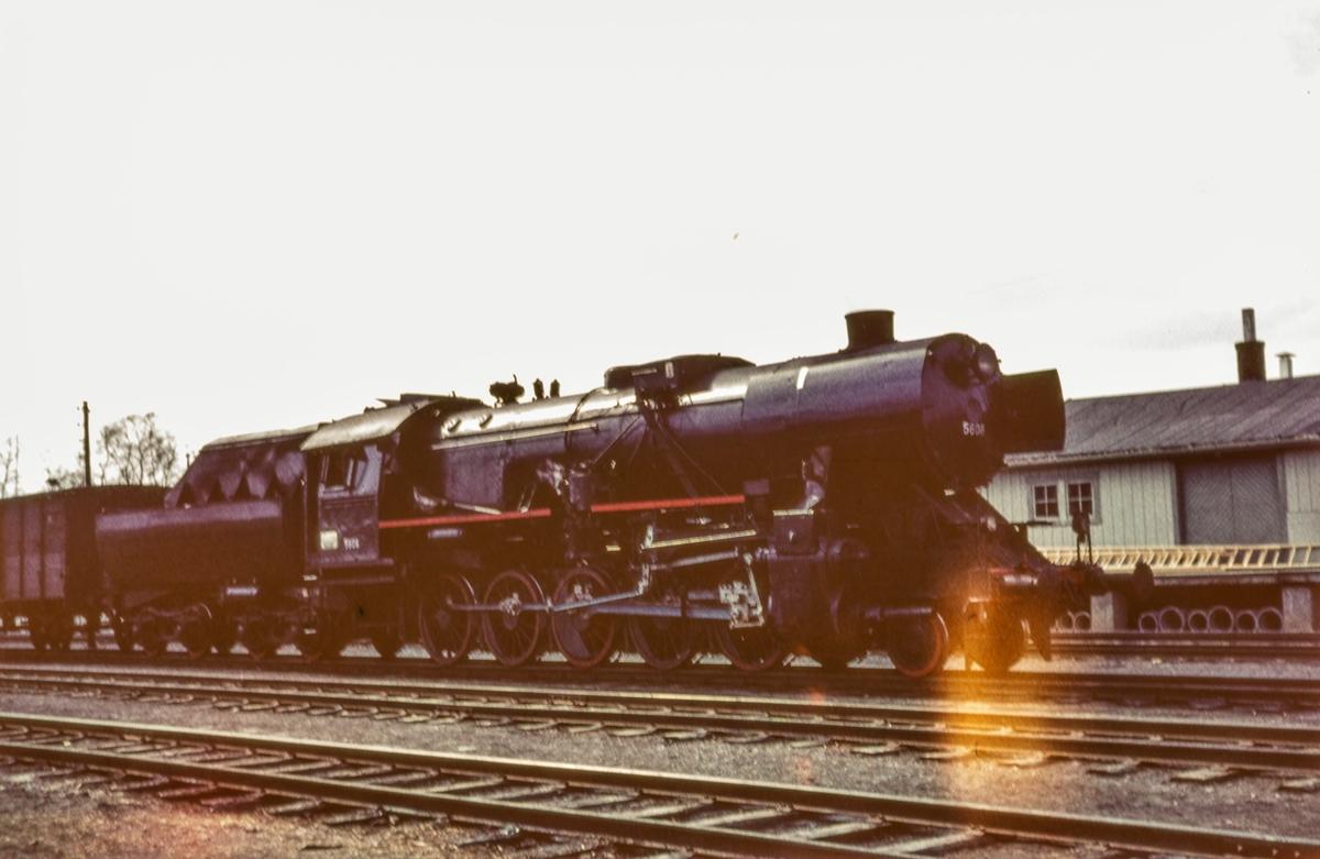 Damplokomotiv type 63a 5606 med godstog.