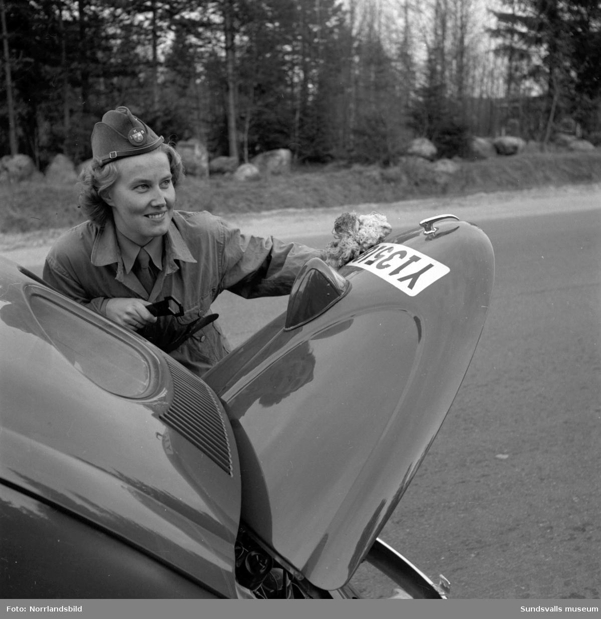Marianne Larsson vid Sundsvalls kvinnliga bilkår med sin folkvagn på olika platser i Sundsvall. Reportagebilder för tidskriften Bilekonomi som utgavs av IC (OK). Tidningen var föregångare till Vi Bilägare.