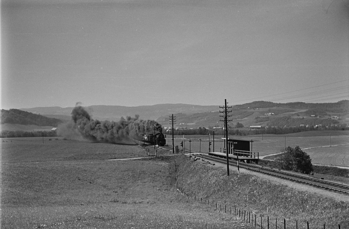 Godstog retning Trondheim ved Lerli holdeplass. Toget trekkes av damplokomotiv type 63a nr. 6396.