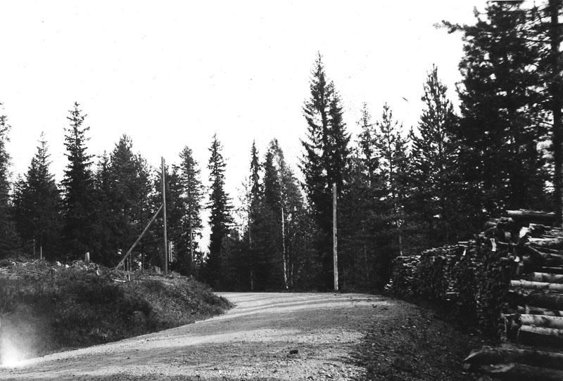 Haldia-kroken, spökstället mellan Medskogen och Bograngen, Södra Finnskoga
