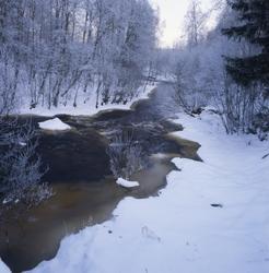 Vinter vid skogsälven Voxnan, Söräng 16 januari 2001. Vattne