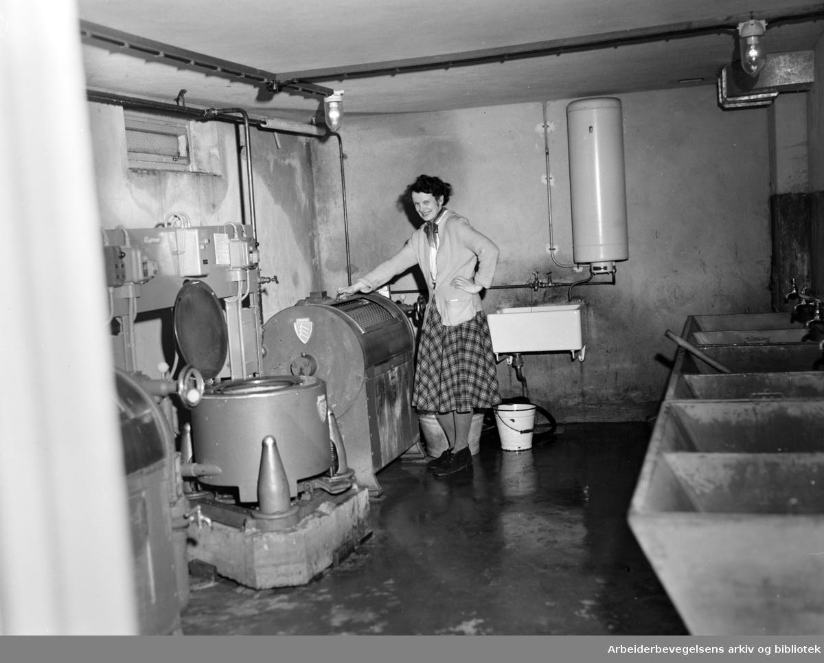 Vaskekjeller. Sigrid Kristiansen bor i en av stjerneblokkene på Grorud. Februar 1954.