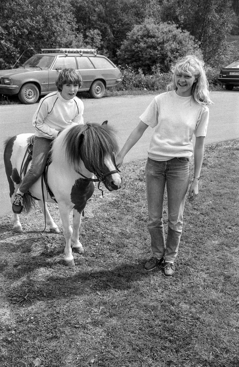 Langhusdagene 1983