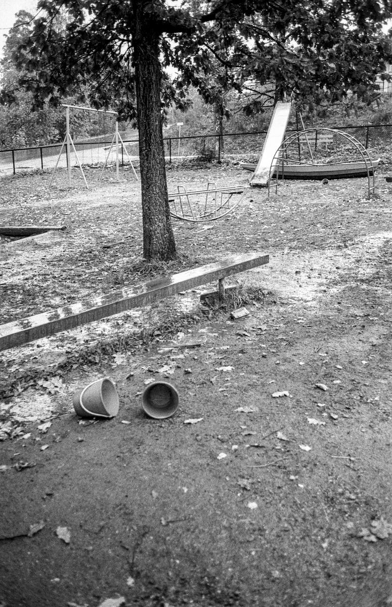 100 år gammel eik fredet på Sogsti i Frogn. Fotograf: ØB Ukjent