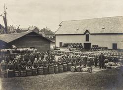 Stoltenberg, Risøy, sett mot øst, ca. 1905.