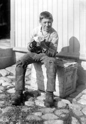 Arbeidspause, gutt med brødblings og spillkum, Halden 1889.
