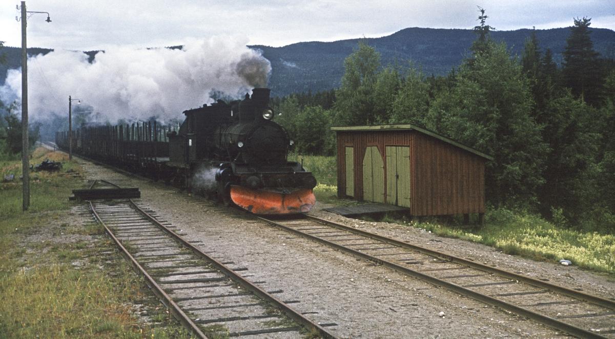 Godstog på Numedalsbanen ved Svene.