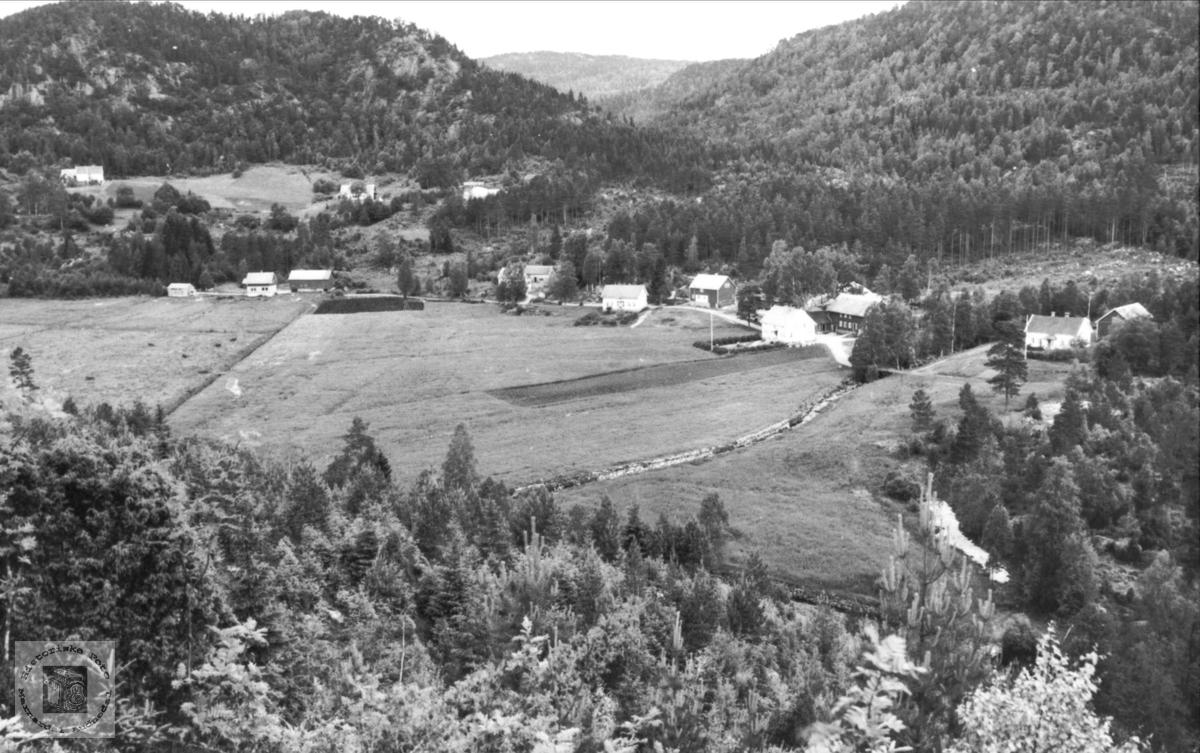 Breilid og Stedjan i Bjelland