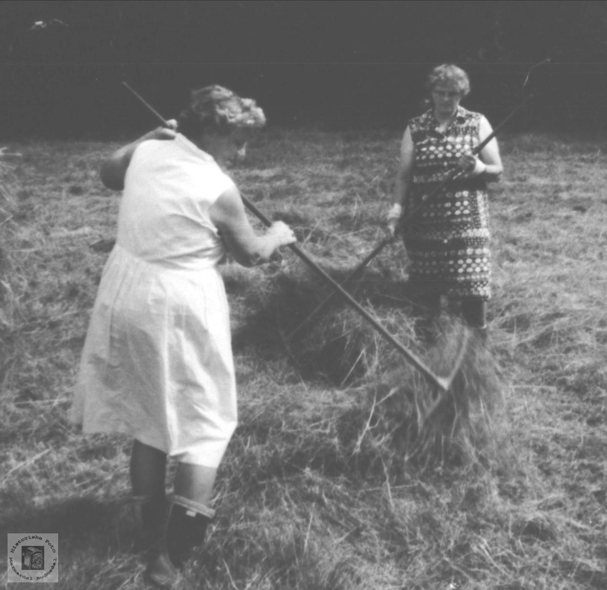 Kvinnfolksarbeid i høyonna! Riva er redskapen, Birkeland Laudal.