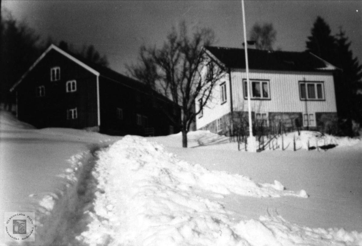 Birkeland i Øyslebø.