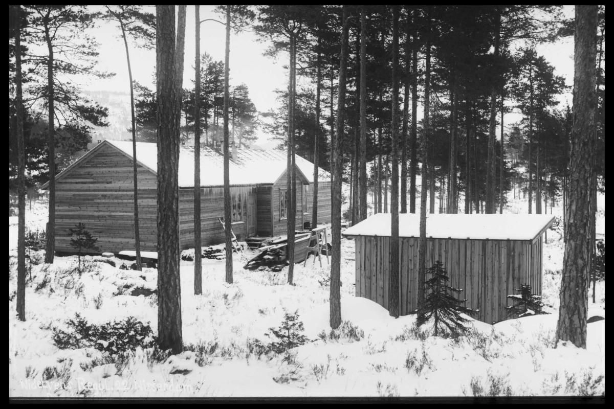 Arendal Fossekompani i begynnelsen av 1900-tallet CD merket 0468, Bilde: 89 Beskrivelse: Bygninger i Nisser
